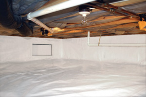 Crawl Space Repair After in Victoria